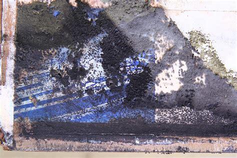schwarzer schimmel wie entfernen mauerwerk was tun bei schimmel was tun bei schimmel tipps f r mieter vom fachanwalt bredereck