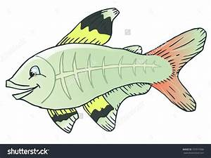 X-ray clipart fish cartoon - Pencil and in color x-ray ...