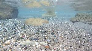 Underwater View Of Rocks,small Stones, And Pebbles Stock ...
