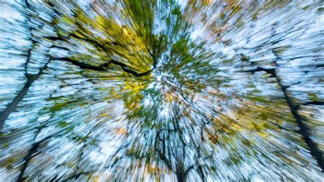 How to create motion blur in-camera | Simple camera, Motion blur, Simply image