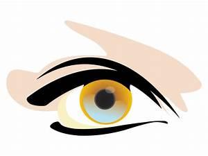 25+ Handpicked Eye Vectors   Vectors   Design Trends