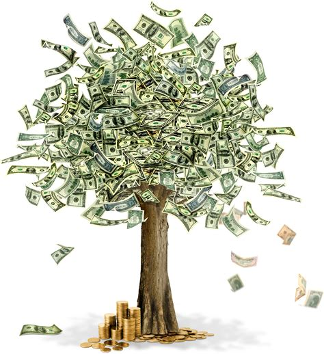 Images Of Money Tree Money Png Image Free Money Pictures