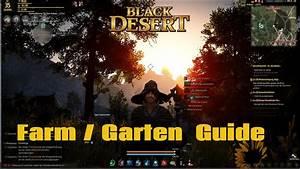 Meine Kleine Farm : black desert meine kleine farm guide garten german ~ Watch28wear.com Haus und Dekorationen