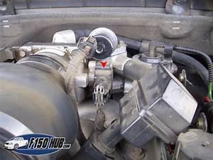 4 6l  U0026 5 4l Ford F
