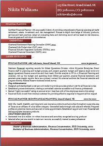 Excellent Professional Resume Sample  Format For All