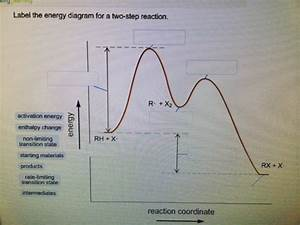 Solved  Label The Energy Diagram
