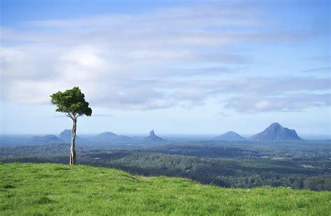 tree hill queensland australia  traveling