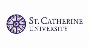 St. Catherine University professor wins faculty excellence ...