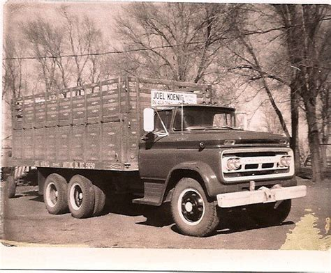 transport a 1960 chevy c60 to chesterfield 119 best livestock stockyards images on cattle