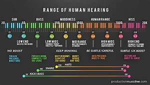 Frequency Spectrum Chart For Mixing Audio Infographic Showing What Is Where In The Audio Spectrum