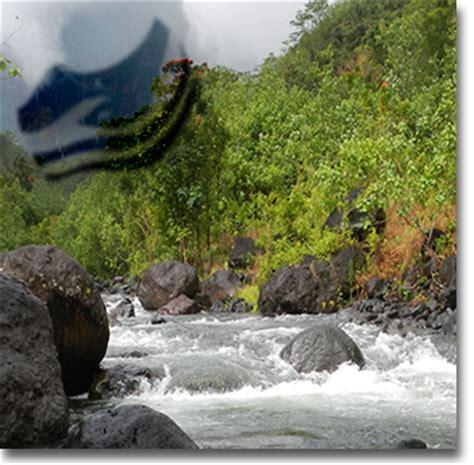 bureau d etude geologie vai natura eau sol environnement polyn 233 sie fran 231 aise