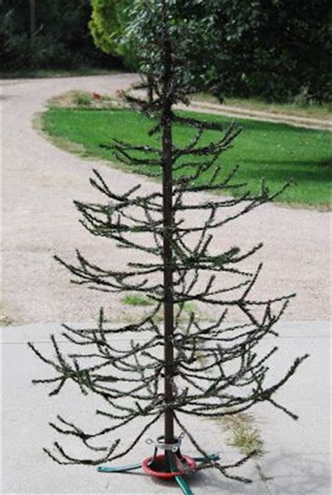 christmas tree turning brown best 25 primitive tree ideas on tree stands country