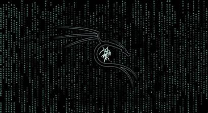 Linux Kali Matrix Resolution Wallpapers 4k Code