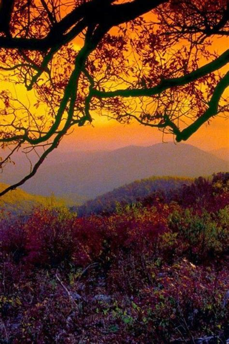 Appalachian Mountains Fall Iphone Wallpaper by 17 Best Images About Blue Ridge Mountains Virginia On