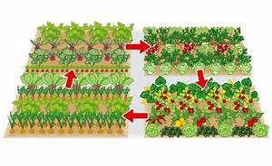 Gemüse Anbauen Plan : kleine fl che gro er ertrag ein gem sebeet clever planen ~ Watch28wear.com Haus und Dekorationen