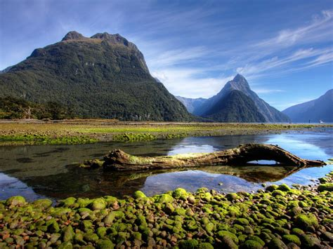 Wallpaper For Free by Milford Sound New Zealand Hd Wallpapers For Laptop