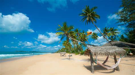 tropical sand beaches  sri lanka indian ocean photo