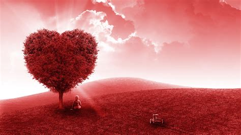 red love heart tree  wallpapers hd wallpapers id