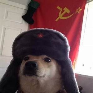 My uncle adopted this former Russian guard dog. He warned ...