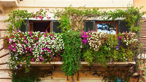Geeignete Pflanzen Südbalkon by Urlaub Auf Balkonien Dekotipps