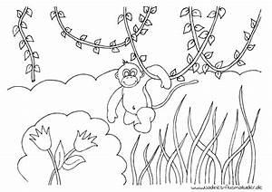 Affe Im Dschungel Nadines Ausmalbilder