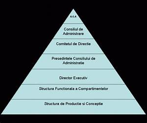 Lucrare Pentru Certificarea Competentelor Profesionale