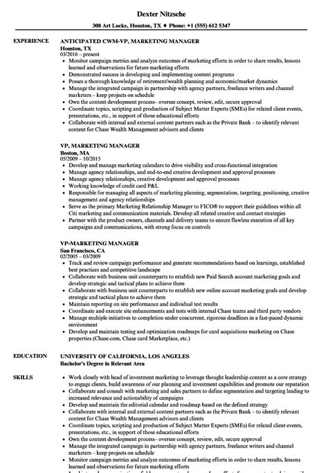 vp marketing manager resume samples velvet jobs