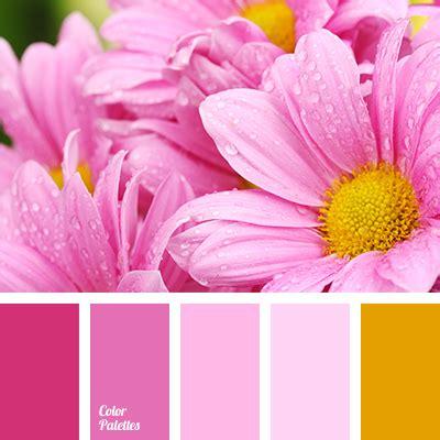 kitchen colors photos color palette 3393 couleurs color 3393