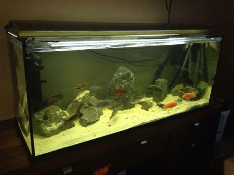 fish aquarium for sale 3ft aquarium for sale 3ft fish tank for sale boston lincolnshire pets4homes 2017 fish