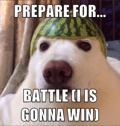Memes About Prepare For Battle I Is Gonna Win Pooch