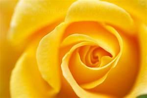 La couleur theorie 1012 blog seinplementpourmoica for Quelle couleur avec du jaune 1 la couleur theorie 101 2 blog seinplementpourmoi ca