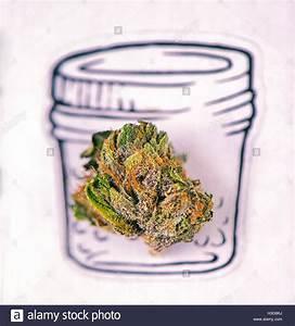 Papier Auf Glas Kleben : getrocknete cannabis marihuana knospe makro ber ein glas zeichnen auf wei em papier stockfoto ~ Watch28wear.com Haus und Dekorationen