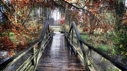 Rainy Autumn Desktop Wallpapers Background Bridge Wooden