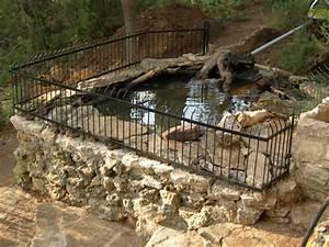 Bassin Exterieur Preforme : notre bassin pour tortues ~ Premium-room.com Idées de Décoration