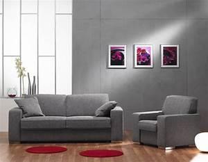 Salon Canapé Gris : salon gautier 15 photos ~ Preciouscoupons.com Idées de Décoration