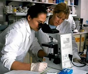 Study of Human Immune Response to HIV | NIAID scientists ...