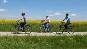 Rücktritt Vom Grundstückskaufvertrag Durch Käufer : stiftung warentest pr ft e bikes r der vom discounter ~ Lizthompson.info Haus und Dekorationen