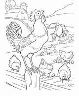 Coloring Fence Farm Gambar Rooster Printable Untuk Diwarnai Sketsa Crowed Hewan Animal Binatang Barnyard Mewarnai Dizeen Library Divyajanani Coloringsky Doghousemusic sketch template