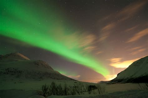 Tromso Northern Lights by Northern Lights In Tromso Norway Roy Hooper Photography