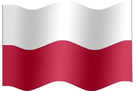 Poland Nt GIF - Find & Share on GIPHY