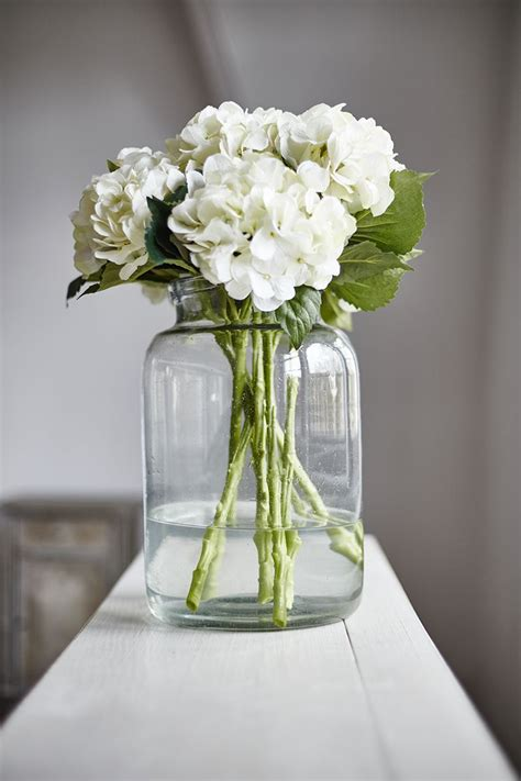 Large Glass Flower Vase by Large Glass Jars For Displaying Beautiful