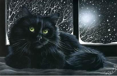 Cat Sitting Window Snowy