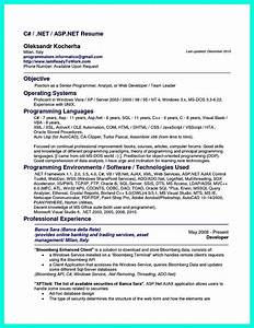 puter programmer resume has some paragraphs that