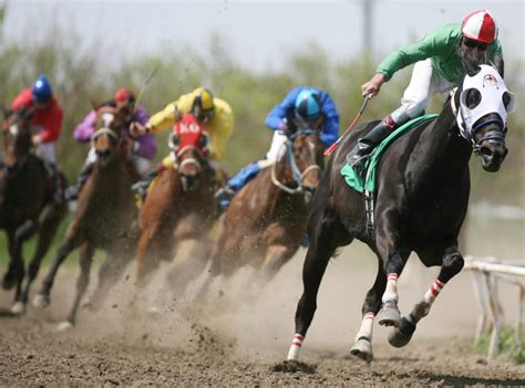 Pixel survival, renzo racer, retro car driver, and more. Horse Racing Videos on the Internet