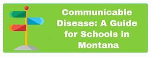 Communicable Disease In Schools