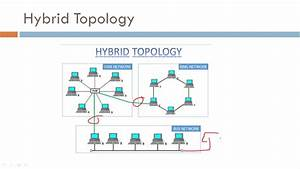 Hybrid Topology - Networking