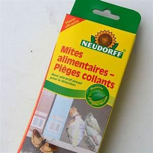 Mites Alimentaires Cycle De Reproduction : boite de 3 pi ges mites alimentaires cologiques avec ~ Dailycaller-alerts.com Idées de Décoration