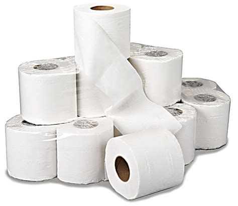 48 Rolls Of White 2 Ply Toilet Roll Tissue Paper Bulk. How To Get Rid Of A Mosquito Bite. Cheapest Phone And Internet Service. How To Transfer Domain From Godaddy. Dental Hygienist Schools In California. Nail Salons In Coon Rapids Mn. Advanced Management Program Harvard. Environmental Database Software. Can You Send Text Messages From Ipad