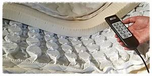 bed mattresses secure beginnings20 how to buy a bed bug With buy bed bugs online