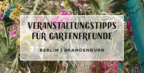 Gartenblog Aus Berlin